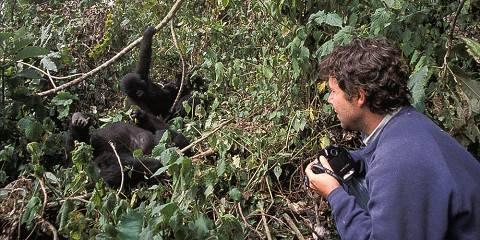 3-Day Great Apes of Rwanda