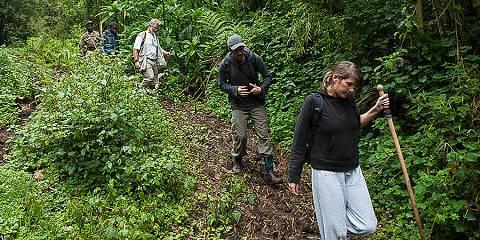 4-Day Rwanda Gorilla Trekking and Lake Kivu Tour
