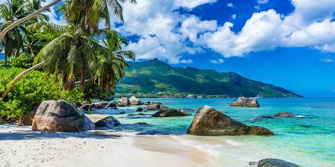 11-Day Romantic Wine Lions & Islands Seychelles