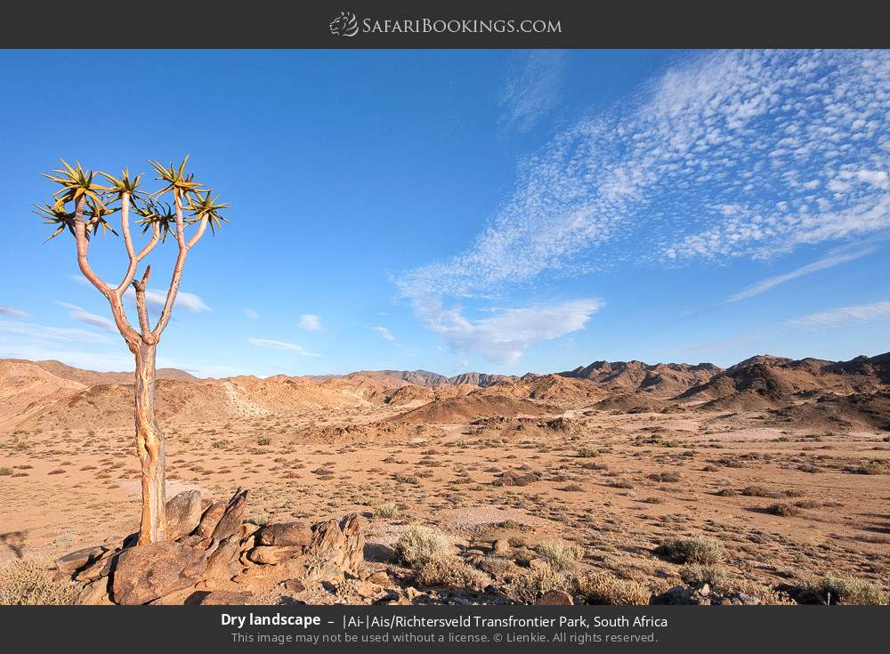 Dry landscape in |Ai-|Ais Richtersveld Transfrontier Park, South Africa