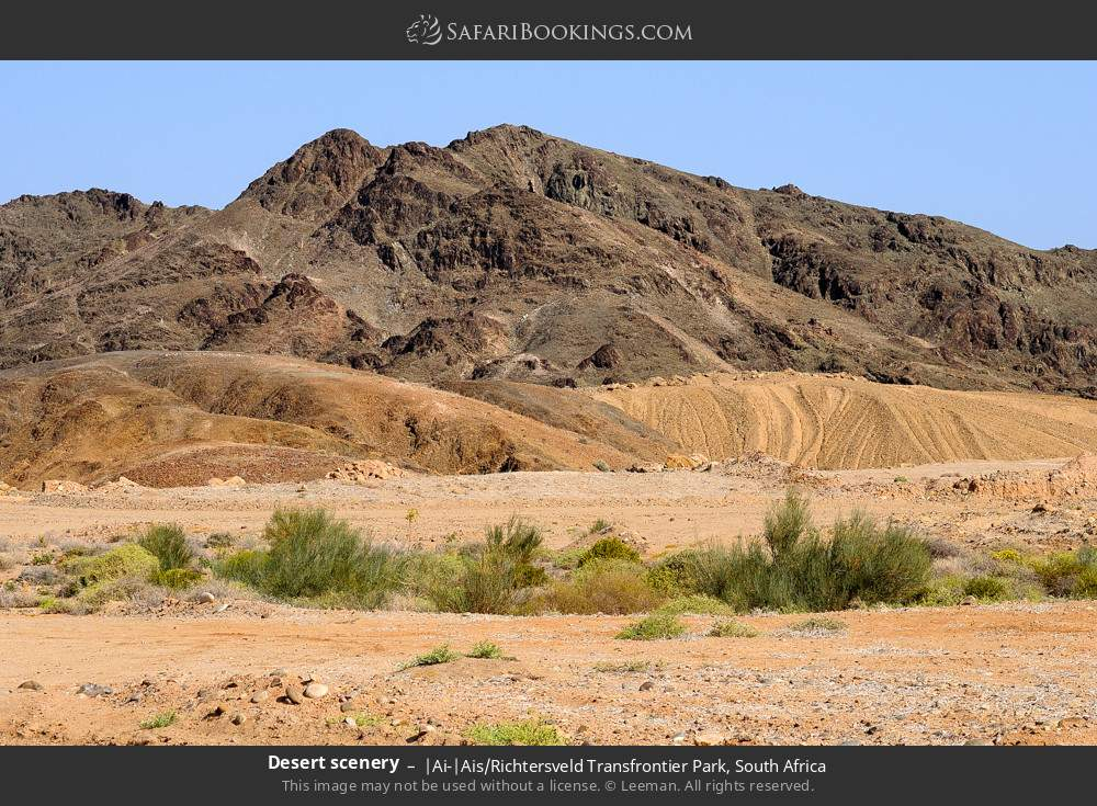 Desert scenery in |Ai-|Ais Richtersveld Transfrontier Park, South Africa