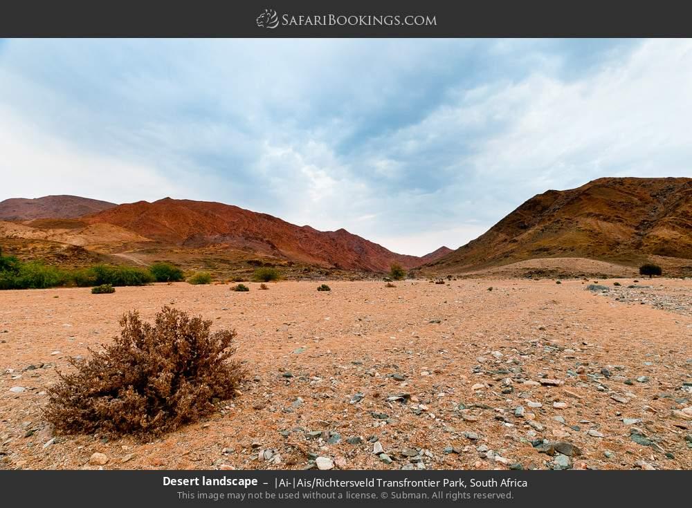 Desert landscape in |Ai-|Ais Richtersveld Transfrontier Park, South Africa