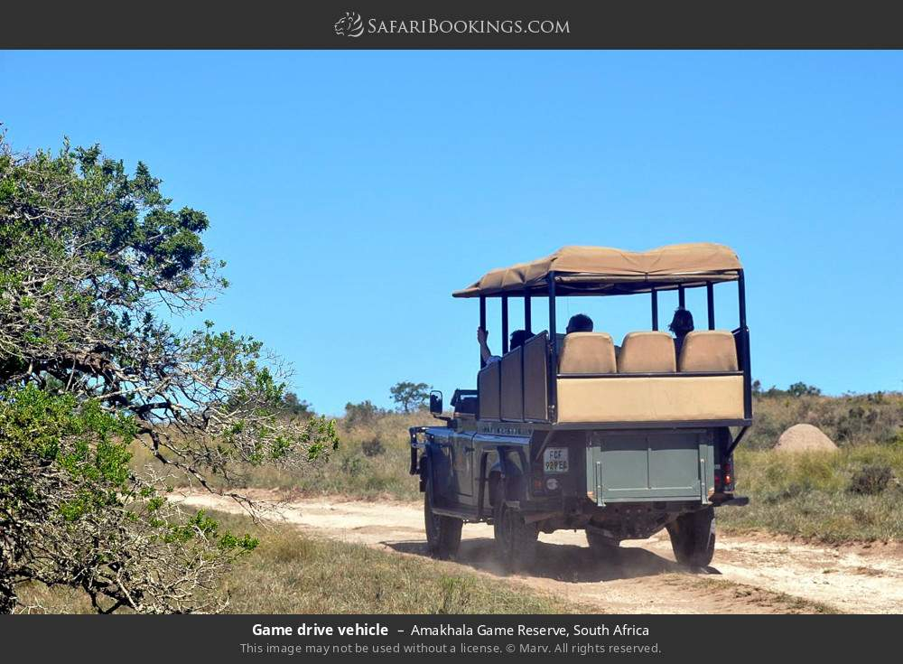 Game drive vehicle in Amakhala Game Reserve, South Africa