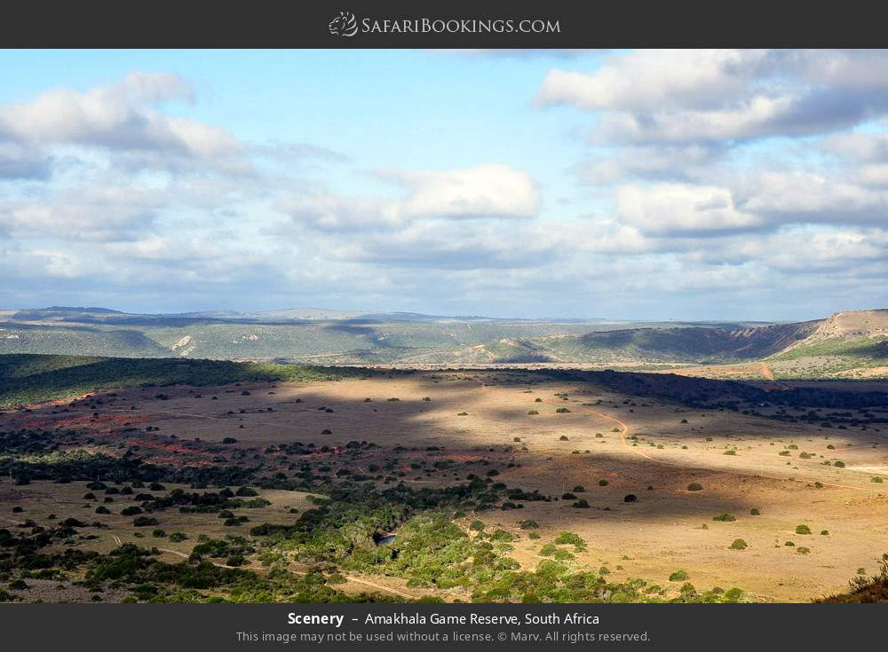 Scenery in Amakhala Game Reserve, South Africa