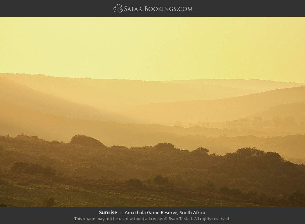 Sunrise in Amakhala Game Reserve, South Africa