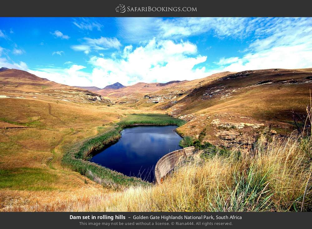 Dam set in rolling hills in Golden Gate Highlands National Park, South Africa