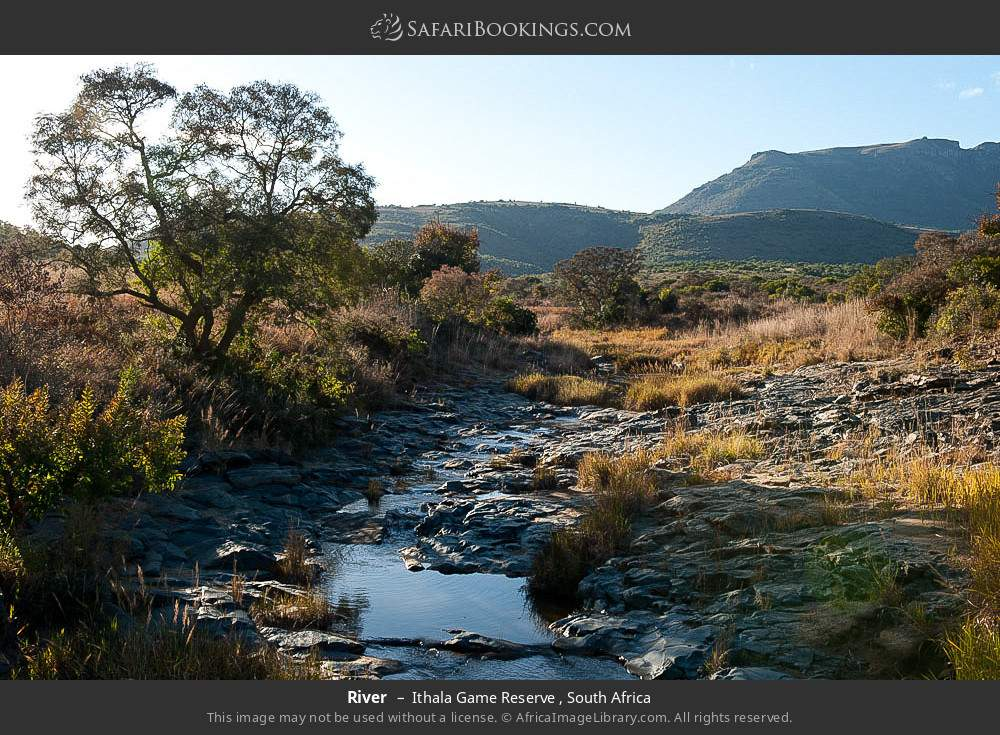 River in Ithala Game Reserve , South Africa