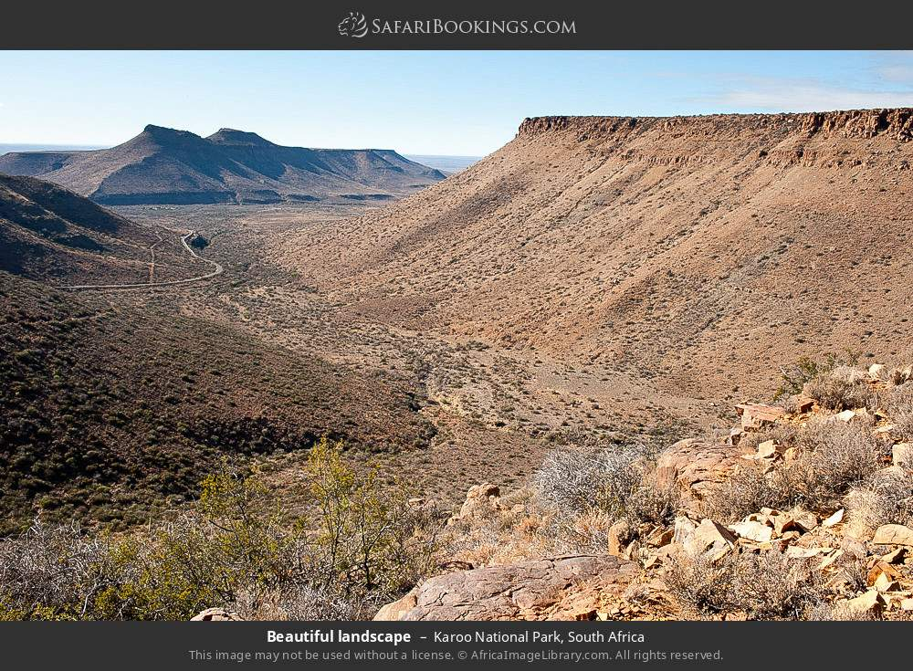 Beautiful landscape in Karoo National Park, South Africa