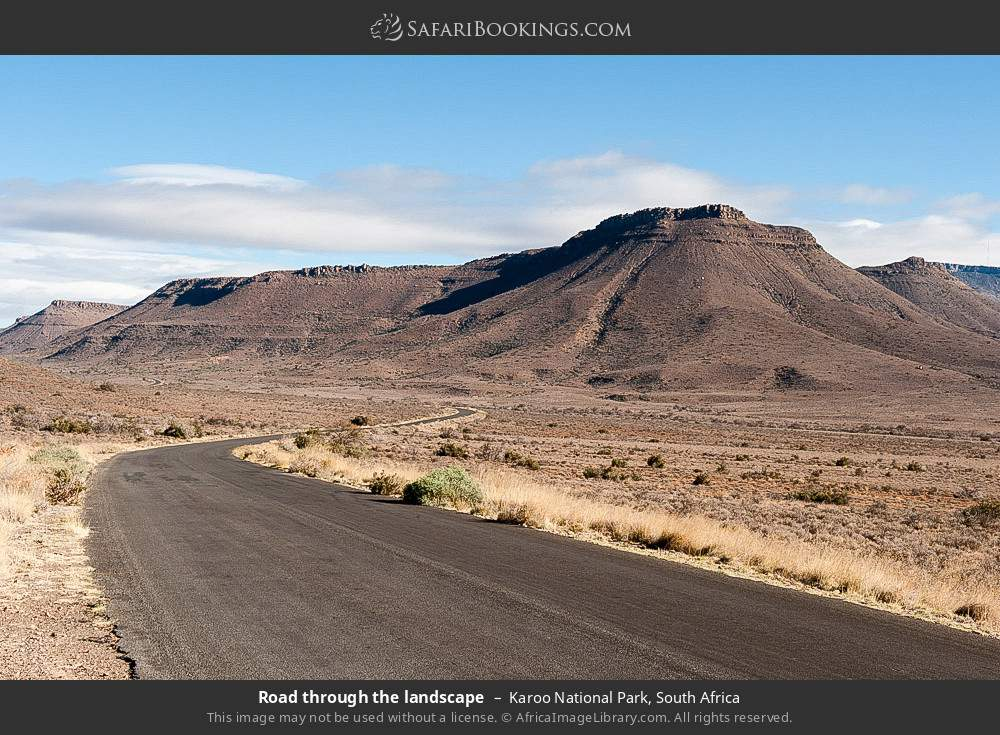 Road through the landscape in Karoo National Park, South Africa