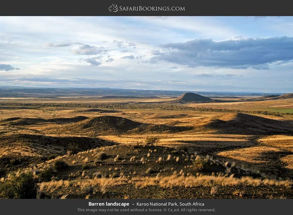 Barren landscape in Karoo National Park, South Africa