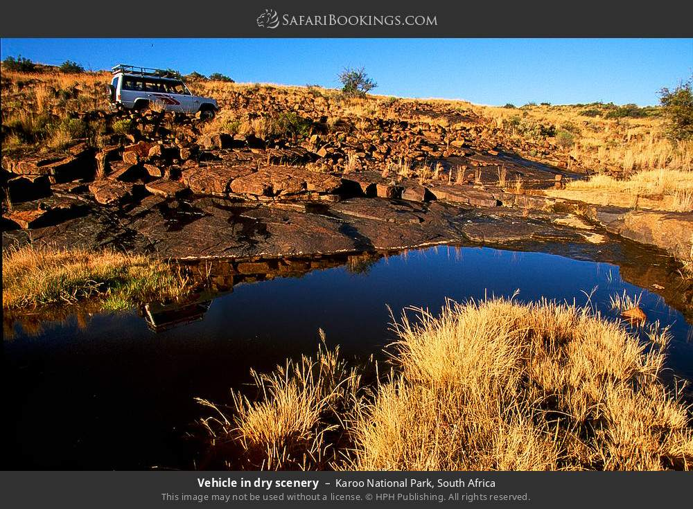 Vehicle in dry scenery in Karoo National Park, South Africa