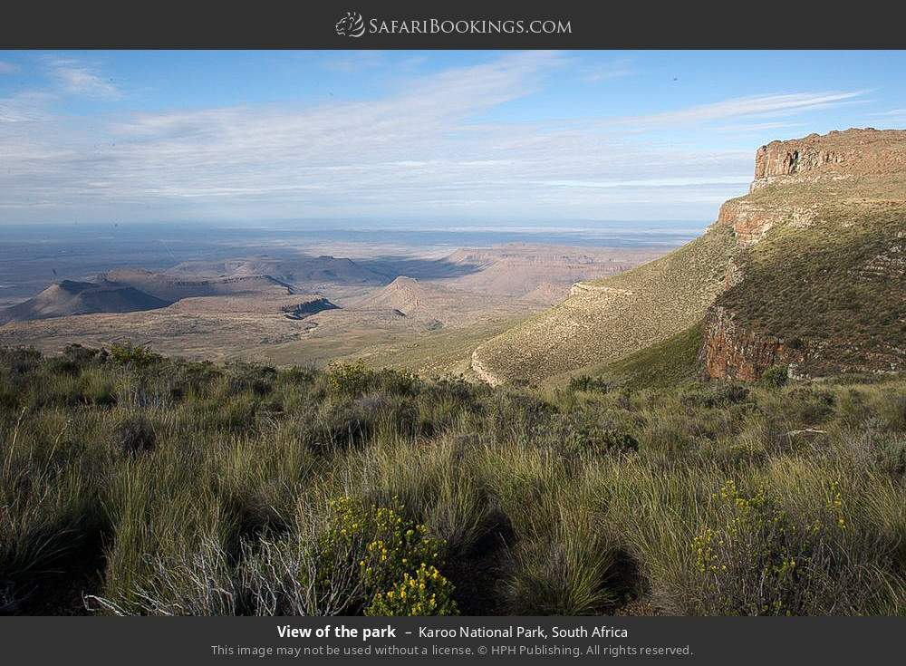 View of the park in Karoo National Park, South Africa