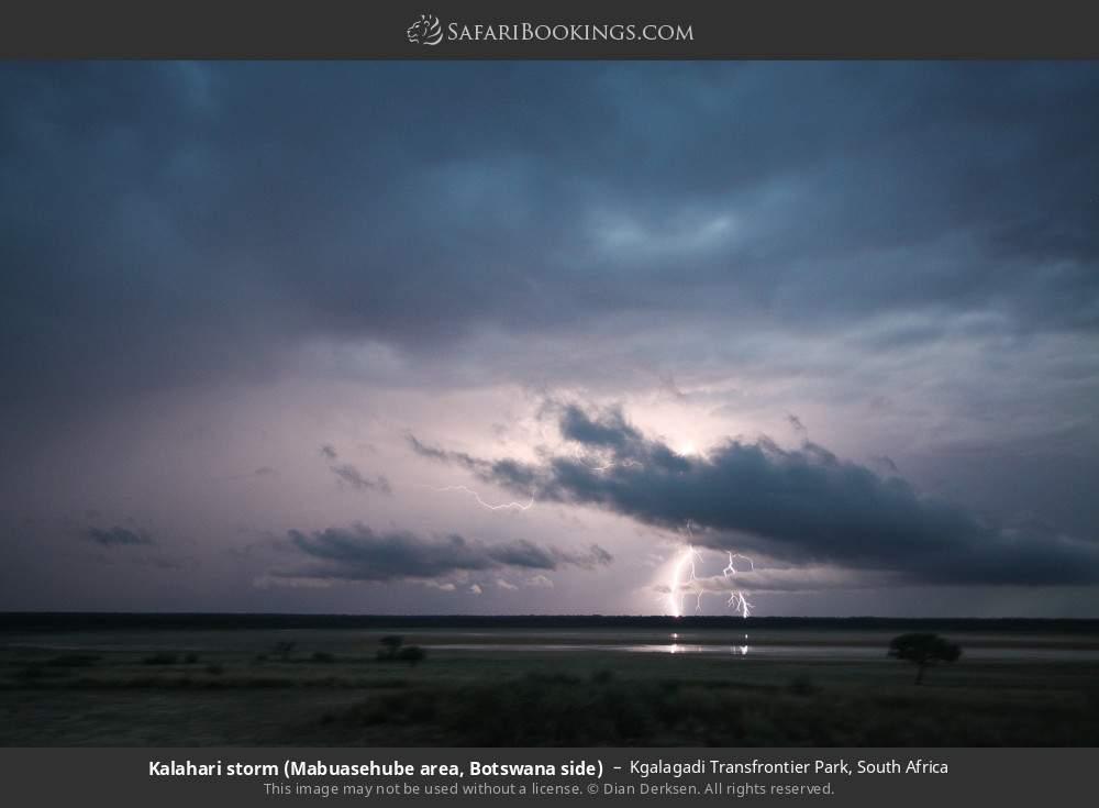 Kalahari storm (Mabuasehube area, Botswana side) in Kgalagadi Transfrontier Park, South Africa