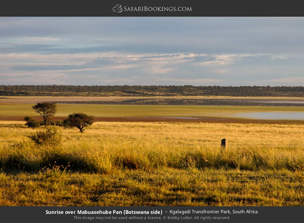 Sunrise over Mabuasehube Pan (Botswana side) in Kgalagadi Transfrontier Park, South Africa