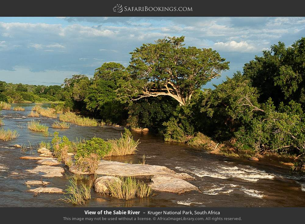 View of the Sabie river in Kruger National Park, South Africa