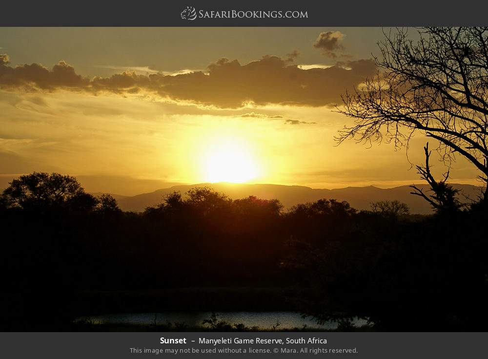 Sunset in Manyeleti Game Reserve, South Africa