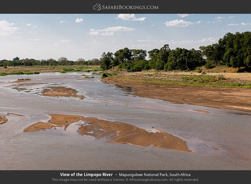 View of the Limpopo River in Mapungubwe National Park, South Africa