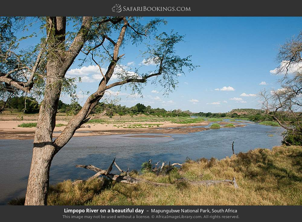 Limpopo river on a beautiful day in Mapungubwe National Park, South Africa