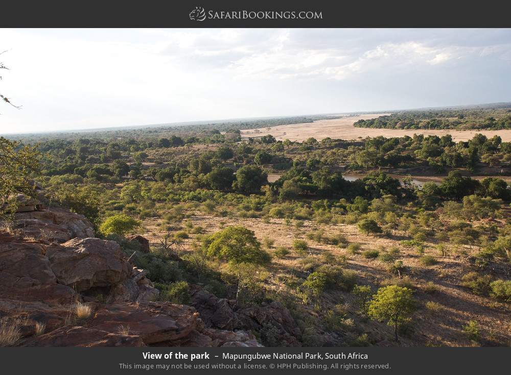 View of the park in Mapungubwe National Park, South Africa