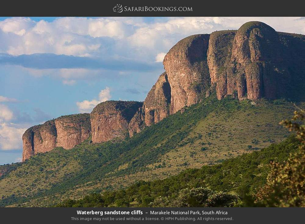 Waterberg sandstone cliffs in Marakele National Park, South Africa