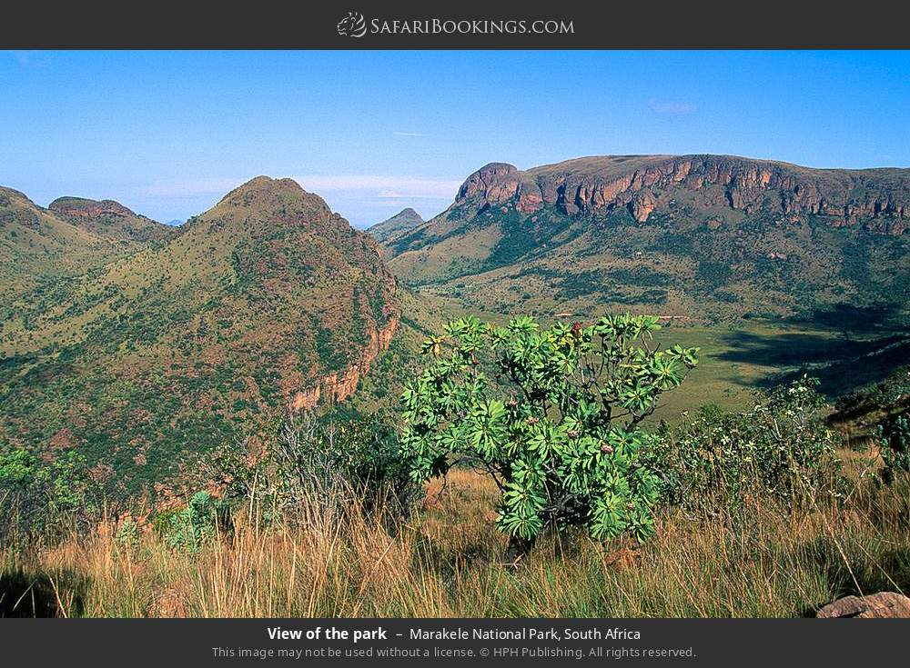View of the park in Marakele National Park, South Africa