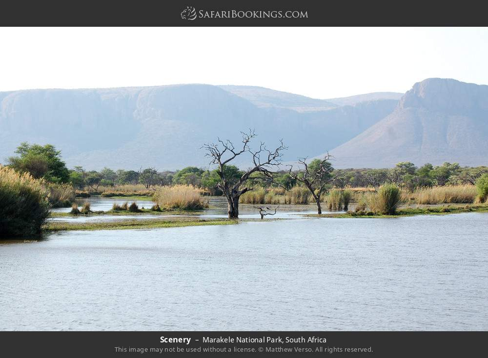 Scenery in Marakele National Park, South Africa