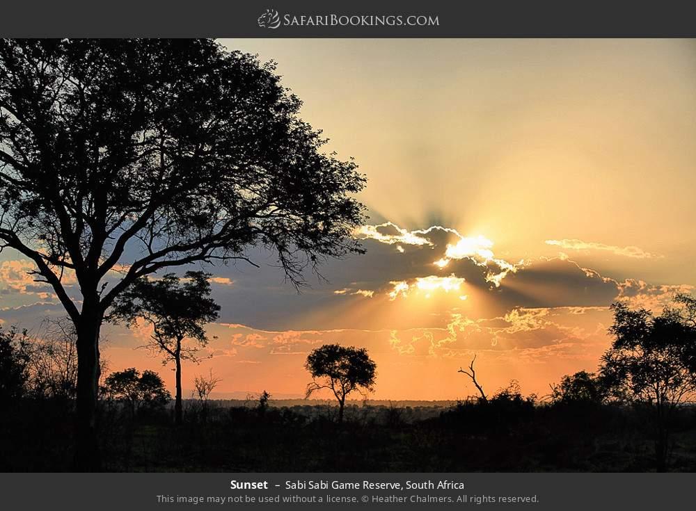 Sunset in Sabi Sabi Game Reserve, South Africa