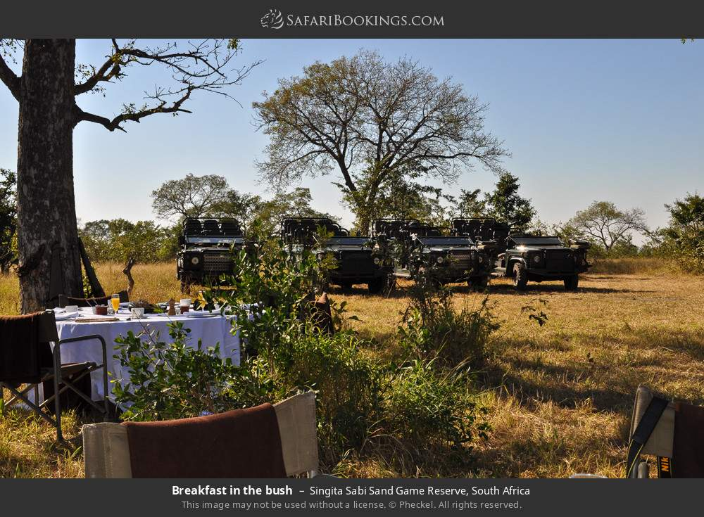 Breakfast in the bush in Singita Sabi Sand Game Reserve, South Africa