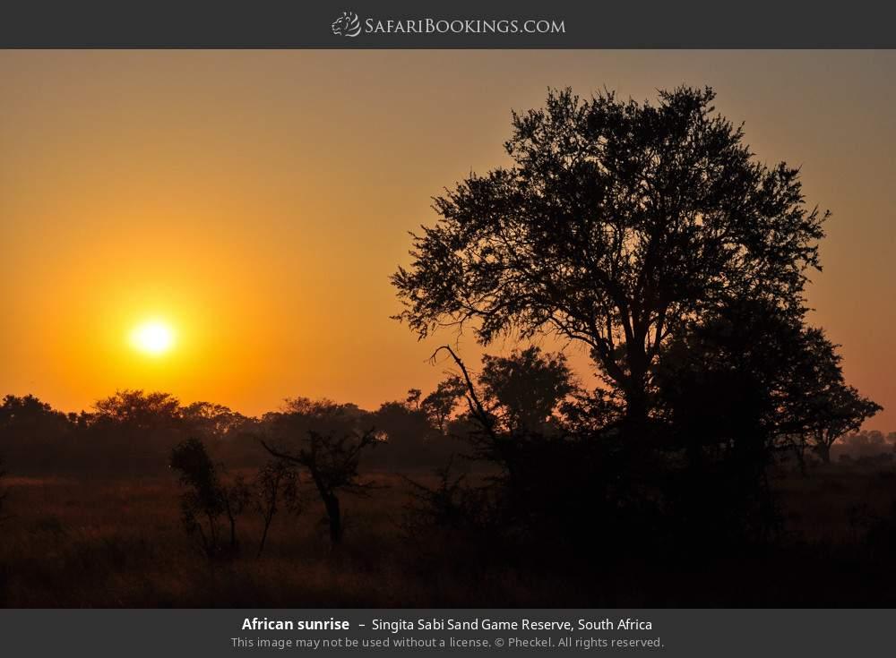 African sunrise in Singita Sabi Sand Game Reserve, South Africa