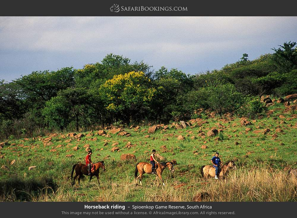 Horse riding in Spioenkop Game Reserve, South Africa