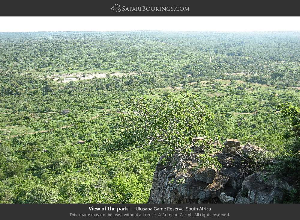 View of the park in Ulusaba Game Reserve, South Africa