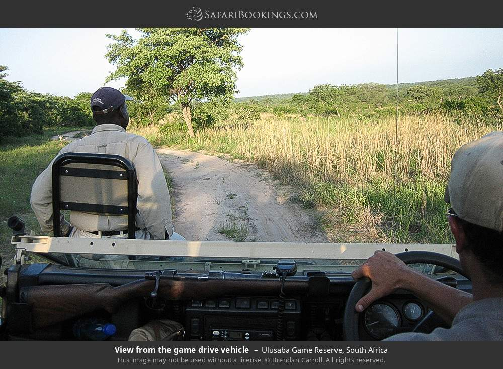 View from the game drive vehicle in Ulusaba Game Reserve, South Africa