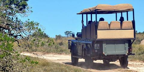5-Day Classic Kruger Lodge Safari