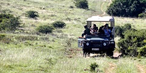 13-Day Safari Kruger Park, South Africa