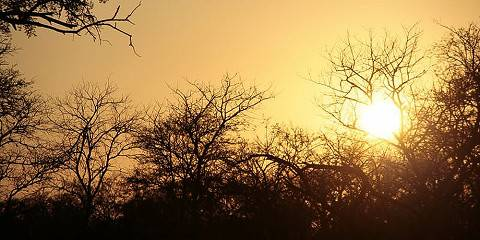 3-Day Budget Greater Kruger National Park Safari