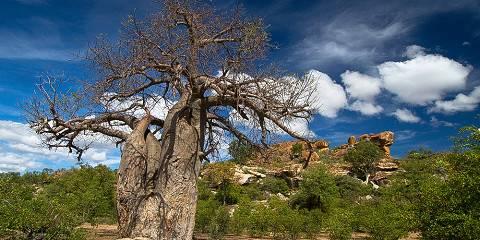 5-Day Kruger National Park & Blyde Canyon - Self - Drive