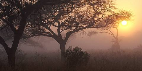 4-Day Greater Kruger National Park Adventure Safari