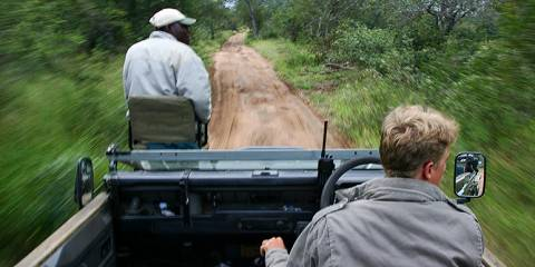 Kruger Tremisana Lodge Safari