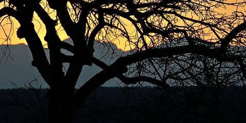 6-Day Wilderness & Kingdom Safari