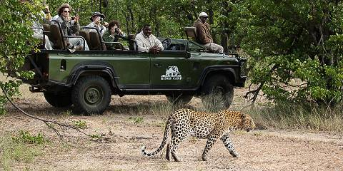 3-Day Classic Kruger Lodge Safari from Johannesburg