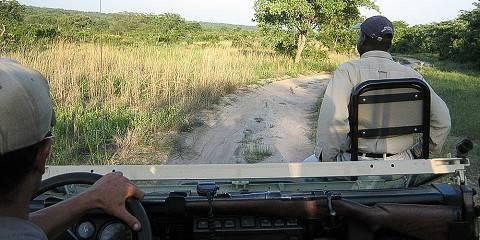 4-Day Kwa Madwala Lodge & Kruger Park Safari