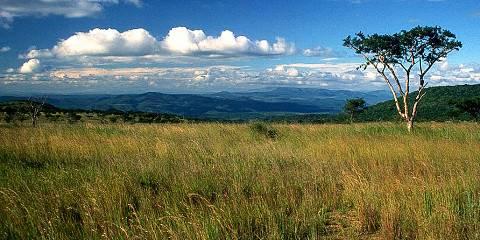 6-Day Greater Kruger Camping Safari