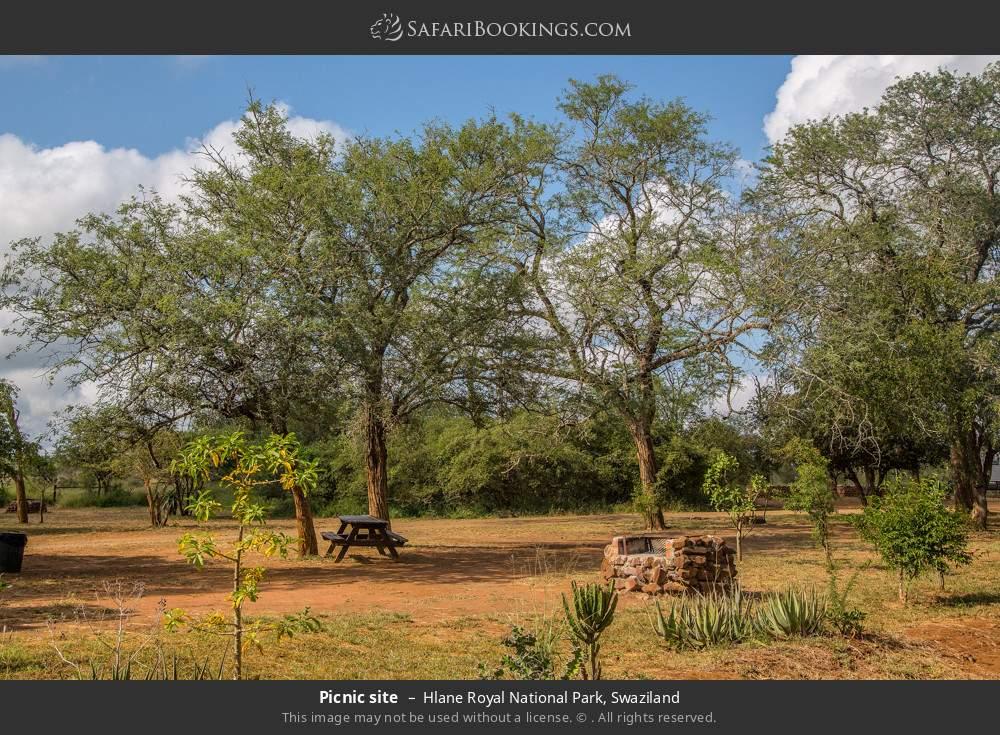 Picnic site in Hlane Royal National Park, Swaziland