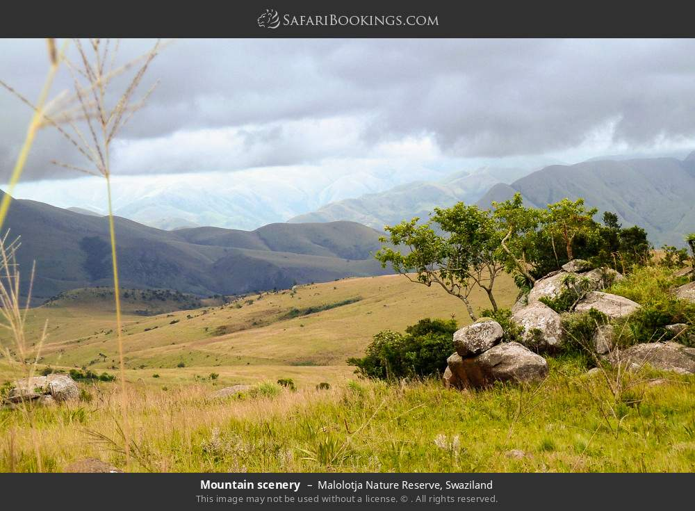 Mountain scenery in Malolotja Nature Reserve, Swaziland