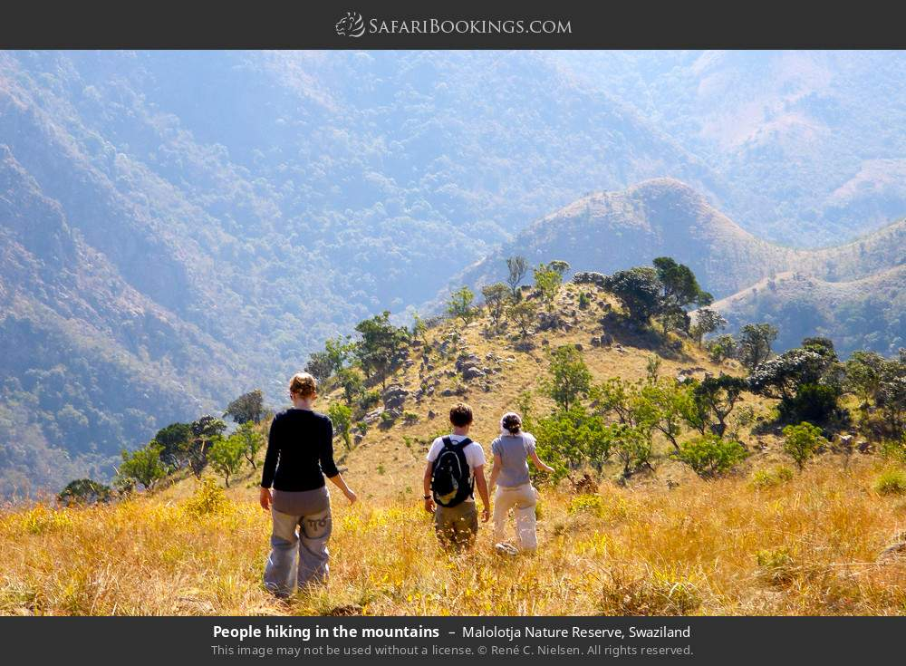 Tourists hiking in the mountains in Malolotja Nature Reserve, Swaziland