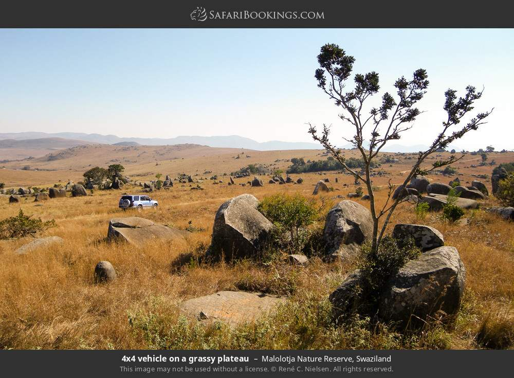 Tourist vehicle on a grassy plateau in Malolotja Nature Reserve, Swaziland