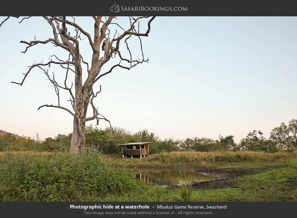 Photographic hide at a waterhole in Mbuluzi Game Reserve, Swaziland