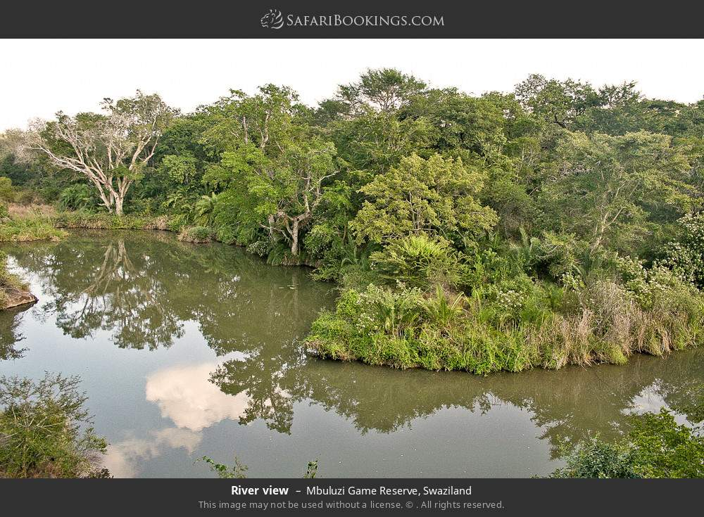 River view in Mbuluzi Game Reserve, Swaziland