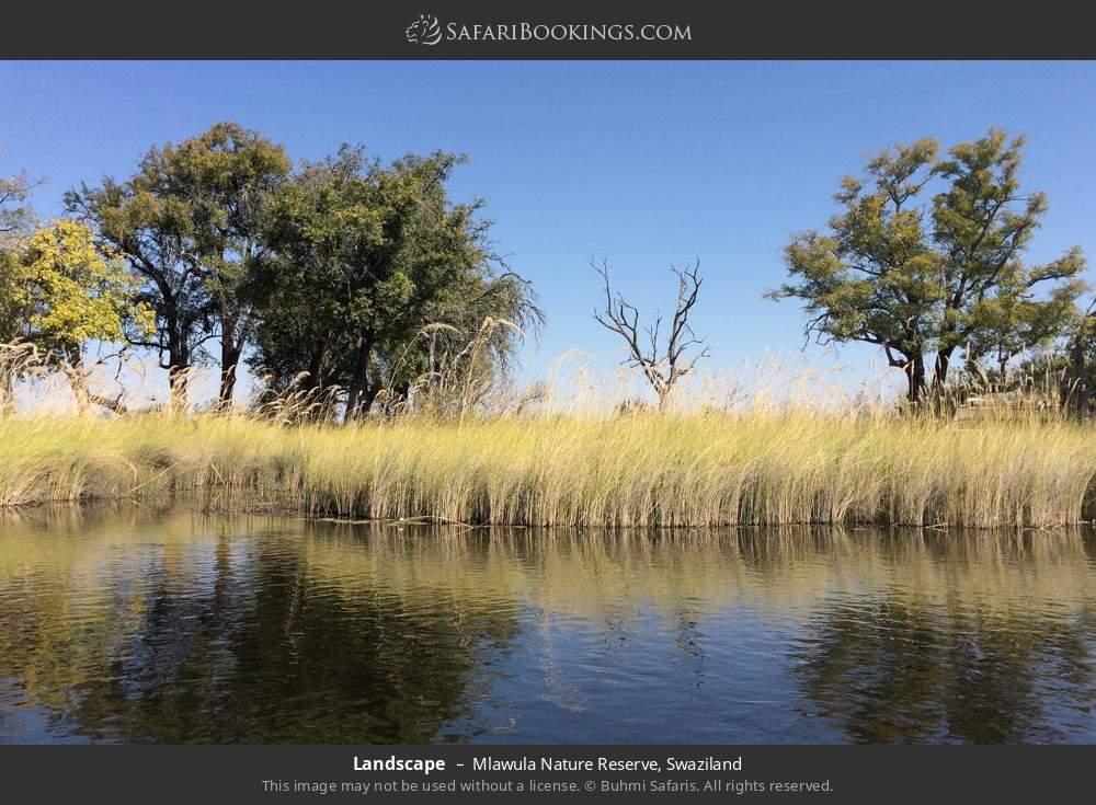 Landscape in Mlawula Nature Reserve, Swaziland