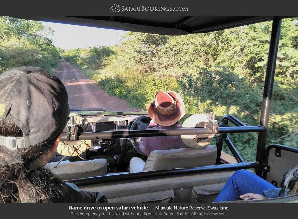 Game drive in open safari vehicle in Mlawula Nature Reserve, Swaziland